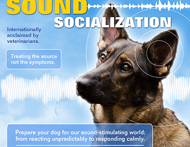 NEW: Angel Dog Sound Socialization 2019 Revision