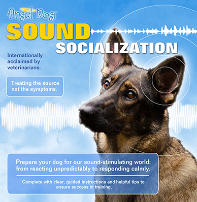 Angel Dog Sound Socialization v2019 Cover web
